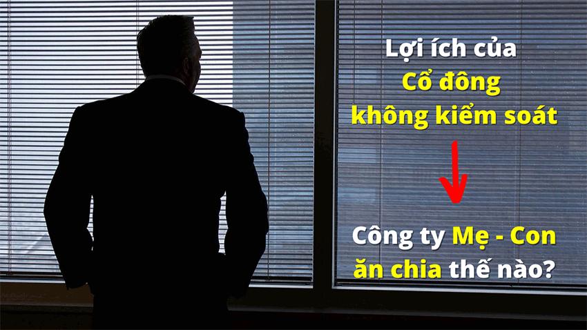 loi-ich-sau-thue-cua-co-dong-khong-kiem-soat (9)